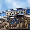 Зоопарки в Кукморе